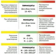 analiz-krovi-2